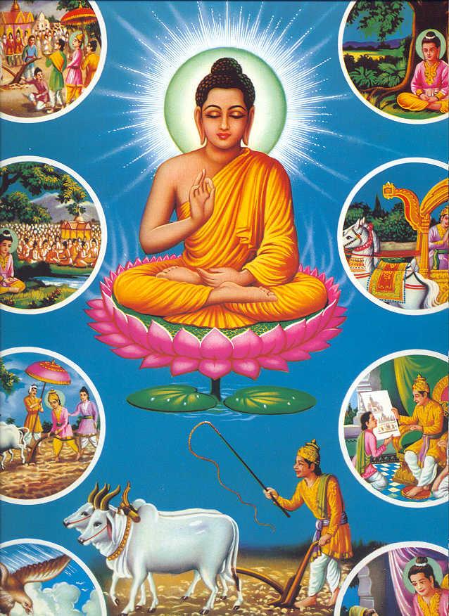 external image buddha5.jpg